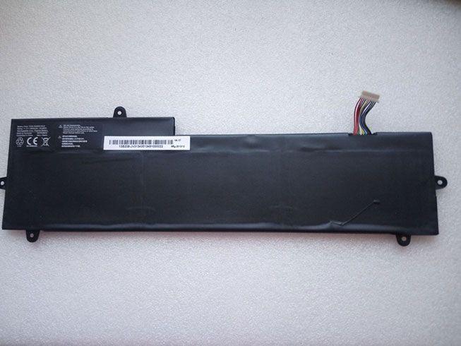 TZ20-3S2600-S4L8 Batteria portatile